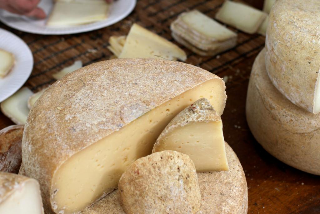 Le fromage de brebis des Pyrénées - Gastronomie des Pyrénées