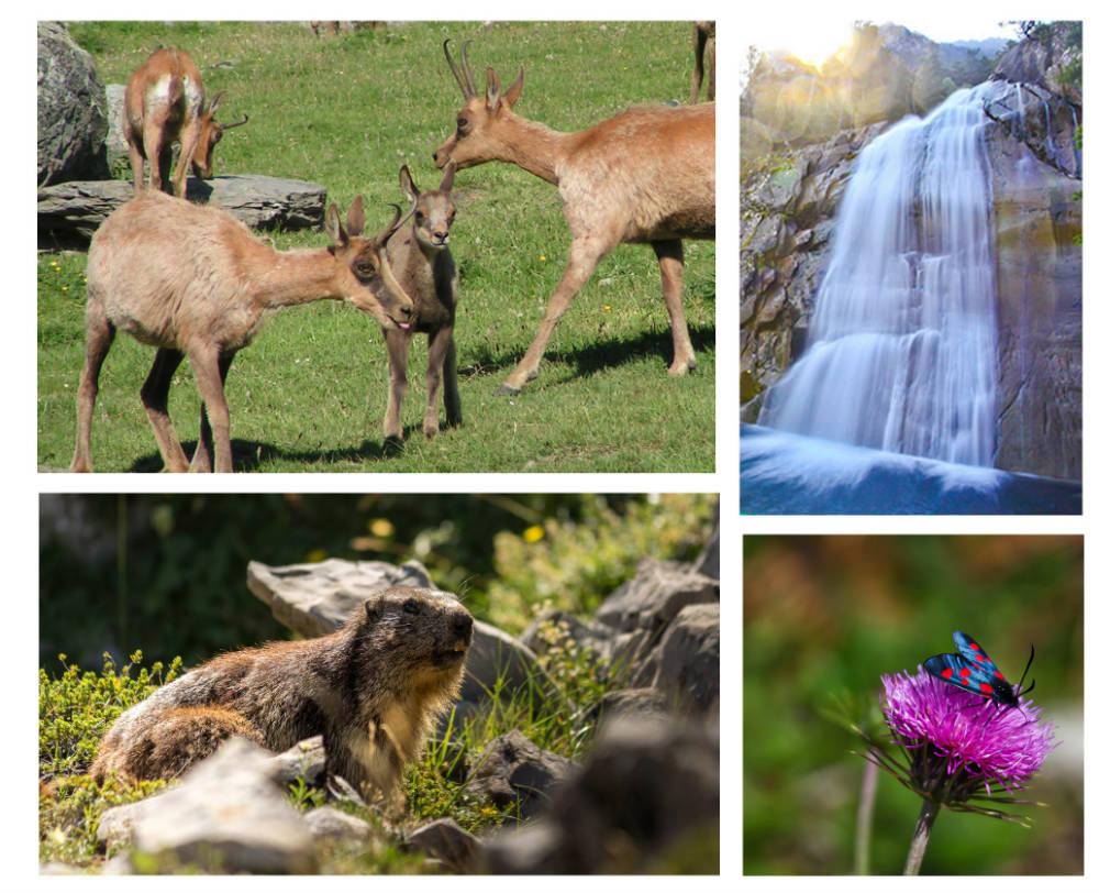 Vacances en famille dans les Pyrénées - N'PY